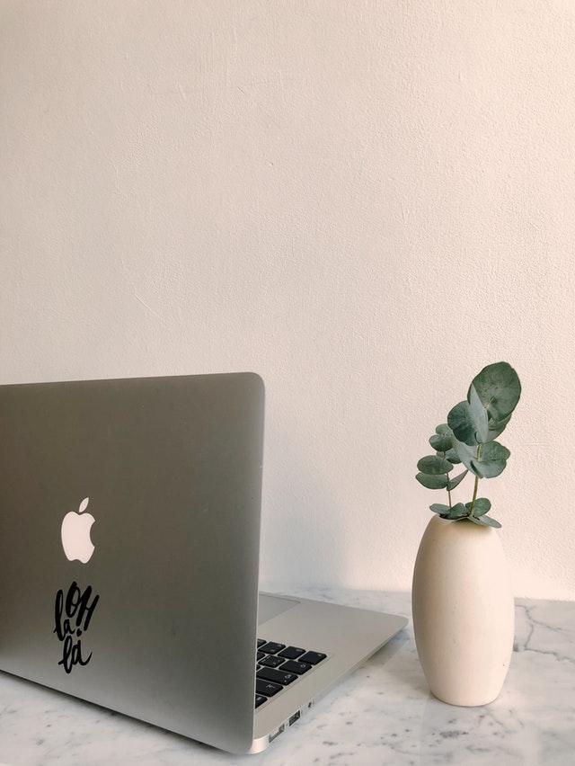 Aus der Ferne arbeiten: Pro und Kontra